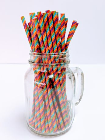 Pride Rainbow Paper Drinking Straw 200x6mm - At Home and Party Use