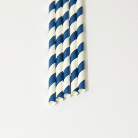 Blue and White Striped Narrow Paper Drinking Straw 200x6mm - At Home and Party Use