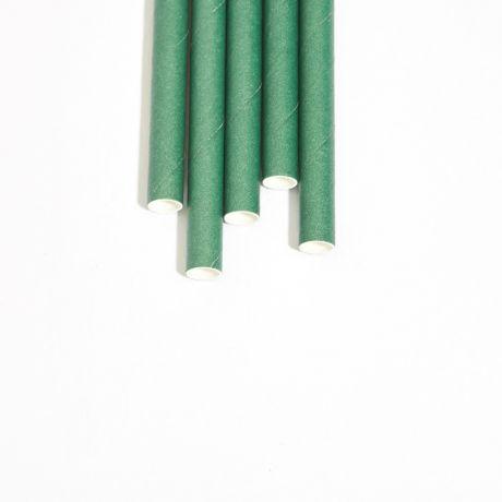 Eco Green Extra Long Medium Paper Drinking Straw 240x8mm - Wholesale