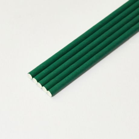 Eco Green Medium Paper Drinking Straw 200x8mm - At Home and Party Use