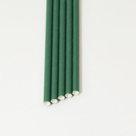 Eco Green Narrow Paper Drinking Straw 200x6mm - Wholesale
