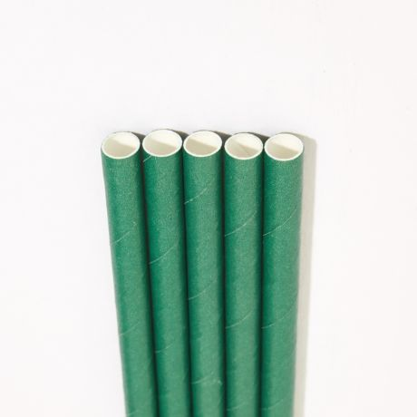 Eco Green Wide Paper Drinking Straw 200x10mm - Wholesale